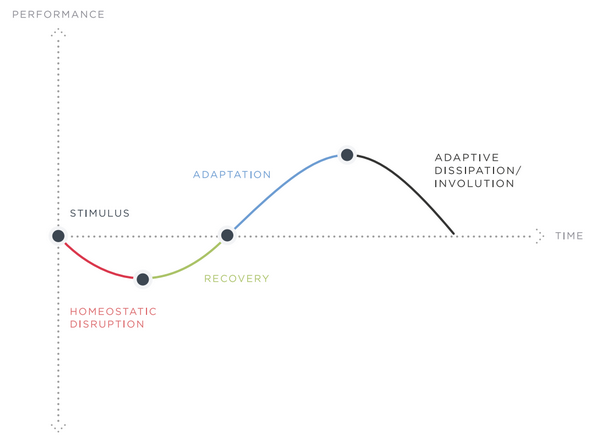 Stress Adaptation Curve