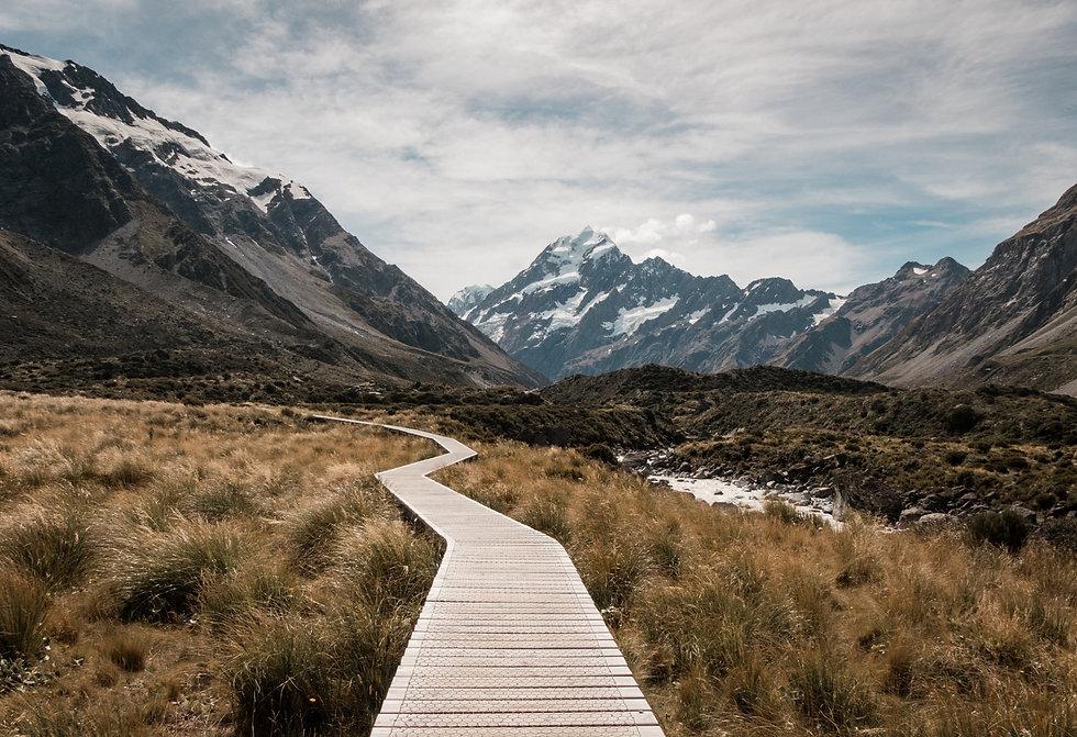 walkway-in-nature.jpeg