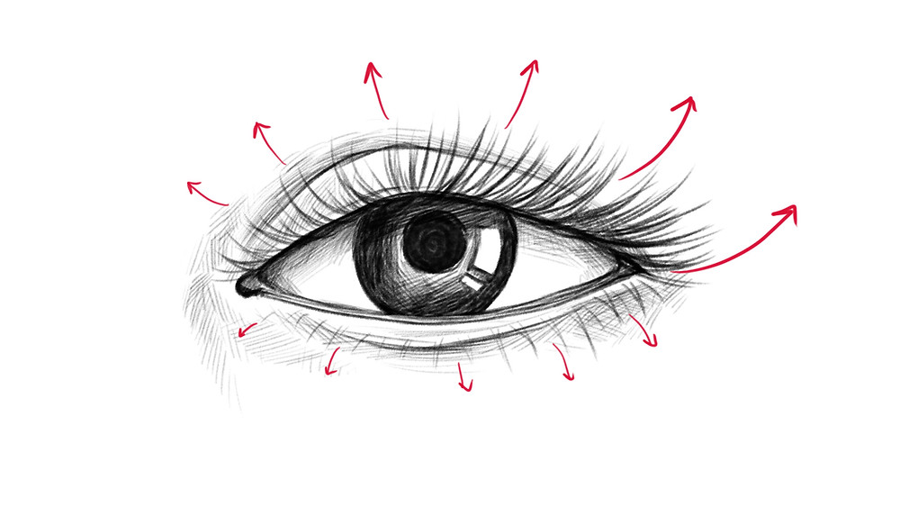 Step 9 of drawing a realistic eye: the eyelashes are added
