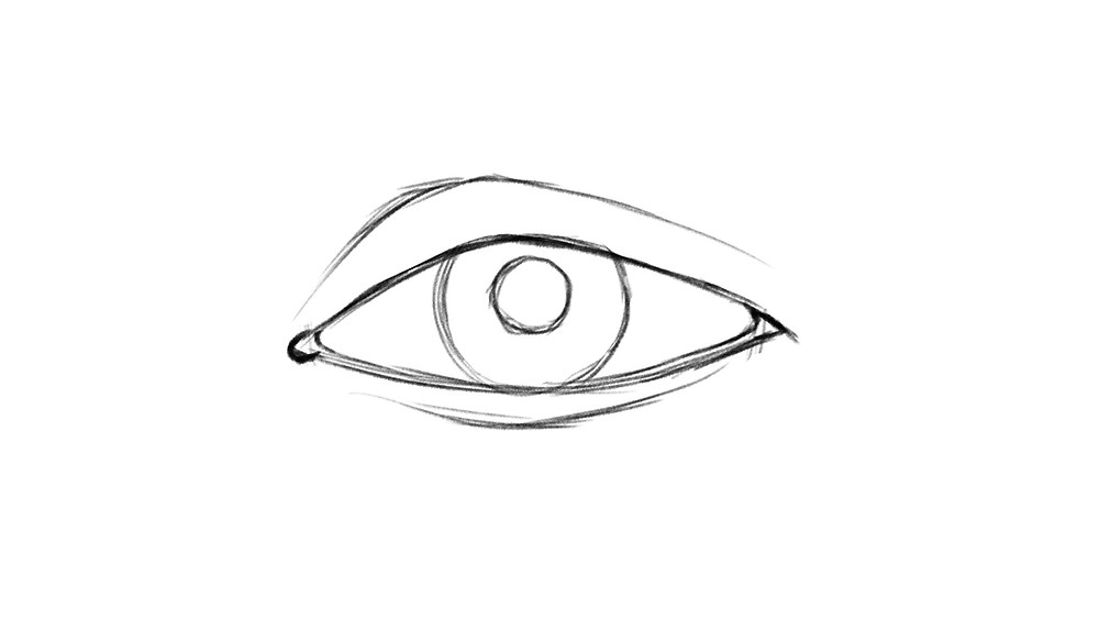 Step 5 of drawing a realistic eye: the upper and lower eye creases are drawn