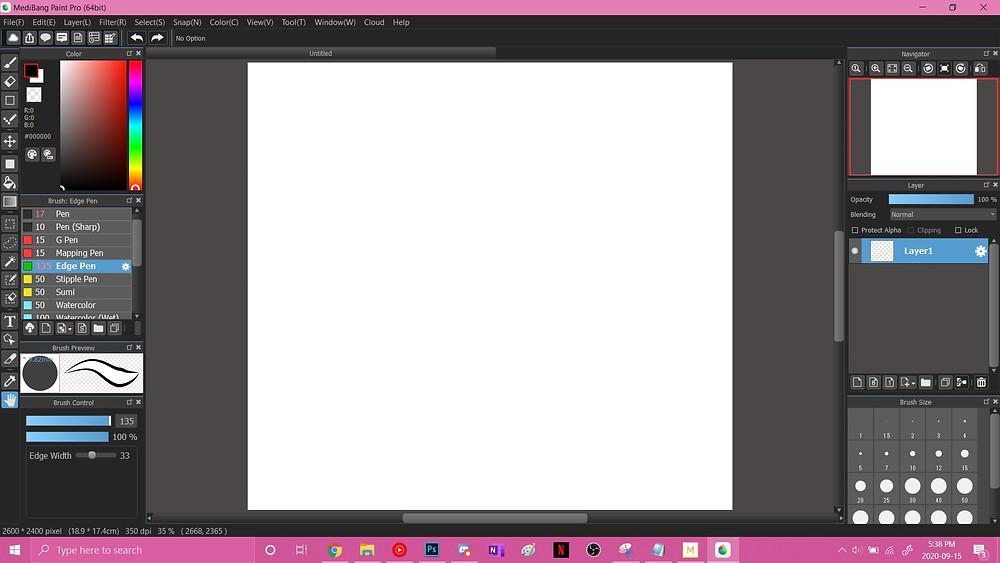 MediBang Paint Pro default blank canvas