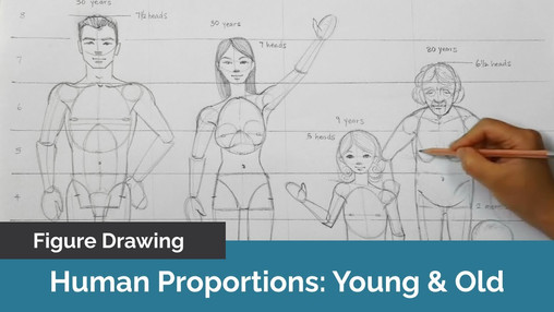 How to Draw Human Proportions: Young & Old
