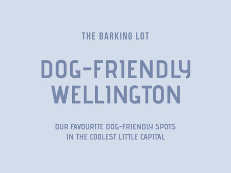 Dog-Friendly Wellington