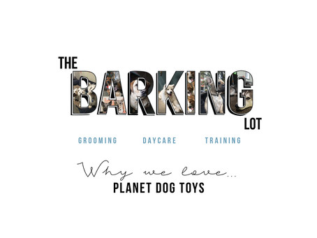 WHY we love Planet Dog