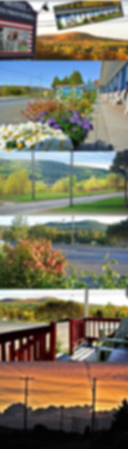 la vue du motel.jpg