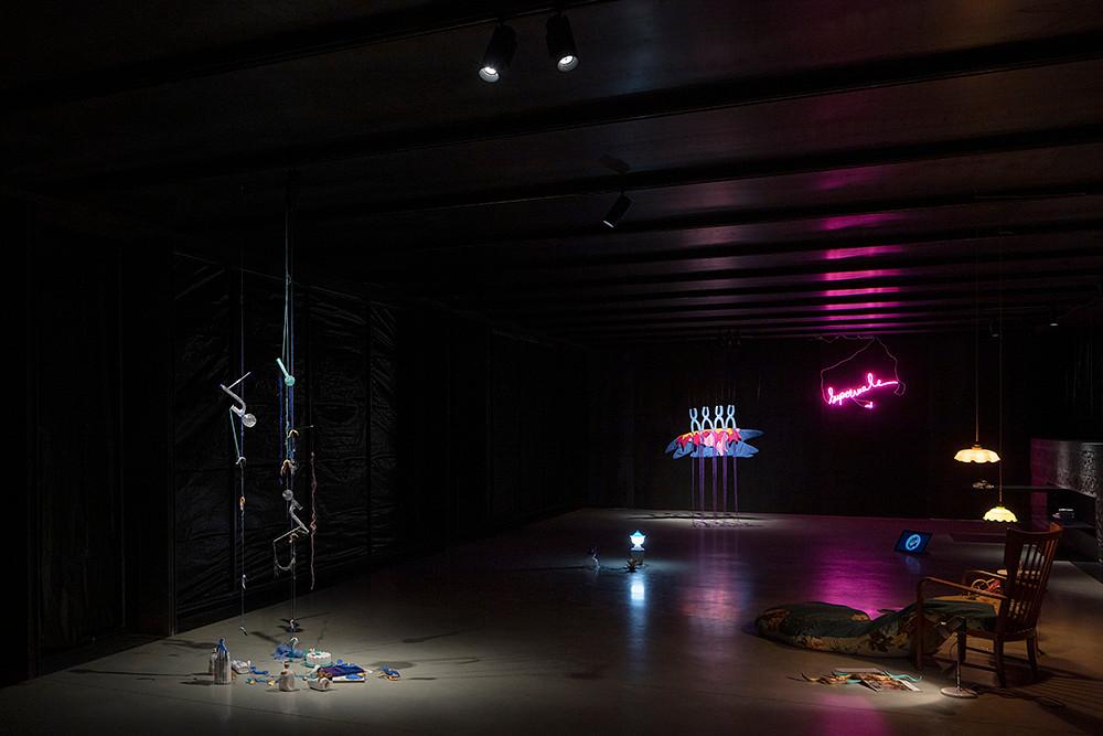 Supermâle et autres tératologies marines, vue d'exposition, La cuisine, centre d'art et de design, 2019
