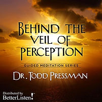 Get the meditation CD: Behind the Veil of Perception