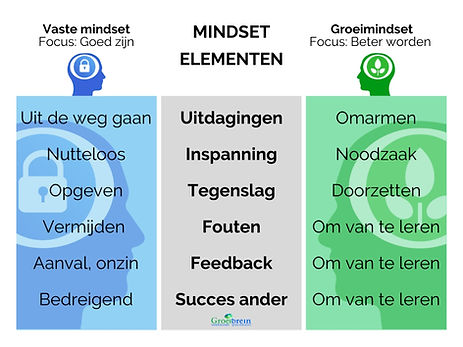 fixed en growth mindset, mindset trainin