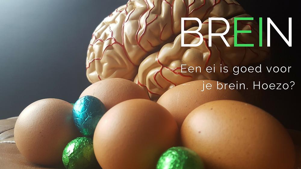 Eieren zijn goed voor je brein. Groeimindset. Groeibrein.