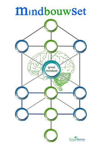 Growth mindset, groeimindset training, trainer, workshop, mindset professional, mindset mentor coach, Groeibrein, mindbouwset