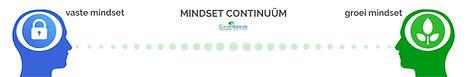 Mindset continuüm, growth mindset, groei
