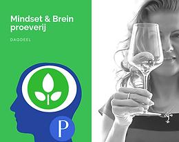P. Mindset & brein proeverij foto websit