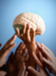 brein op handen .jpg