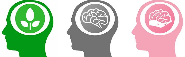 Groewth mindset, fixed mindset, team ontwikkeling, mindset training, mindset professional, mentor, coach, team training, persoonijk leiderschap. Groeimindset, breinkennis, vitaal brein, brainbalance