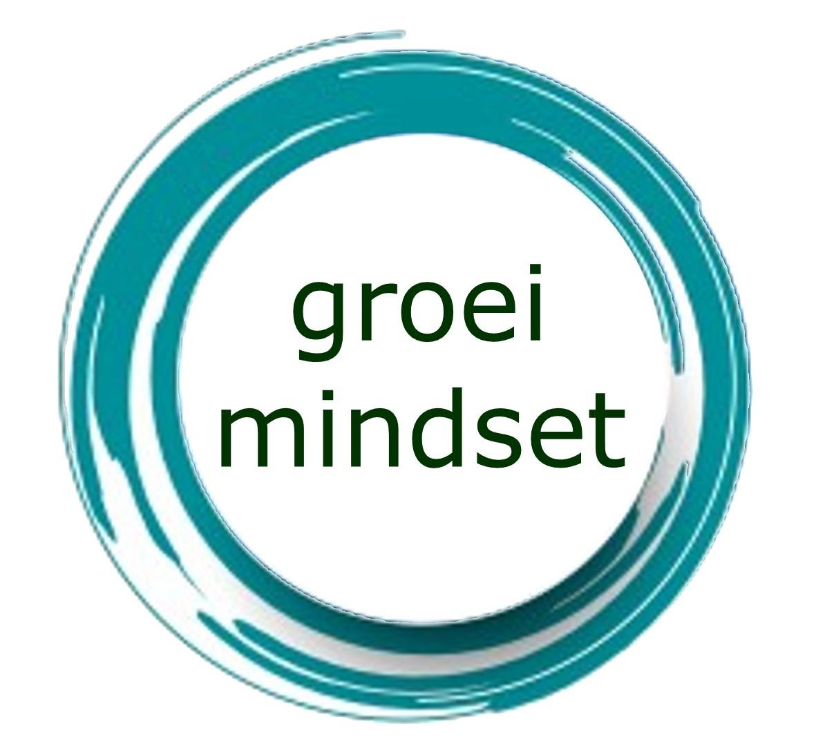 Model los GROEIMINDSET.jpg