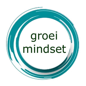 Herken je mindset en de impact ervan! Maak de shift naar een groeimindset!