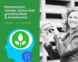 6. Masterclass Minder stress met groeimi