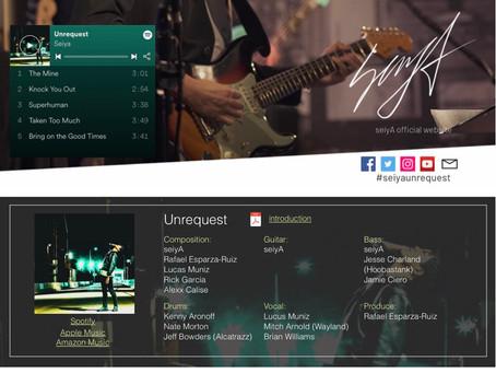 ギタリスト seiyAの公式サイトを制作