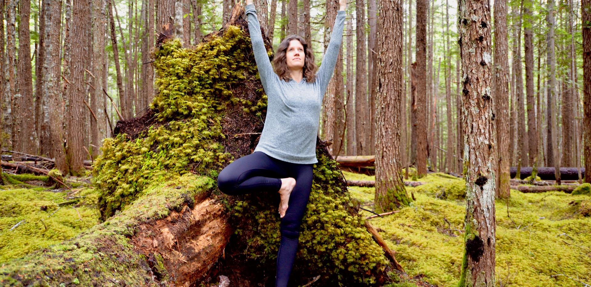 Forest Yoga.jpg