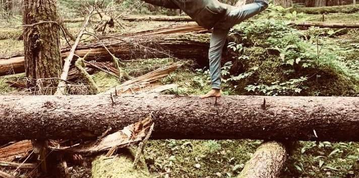 forest yogi