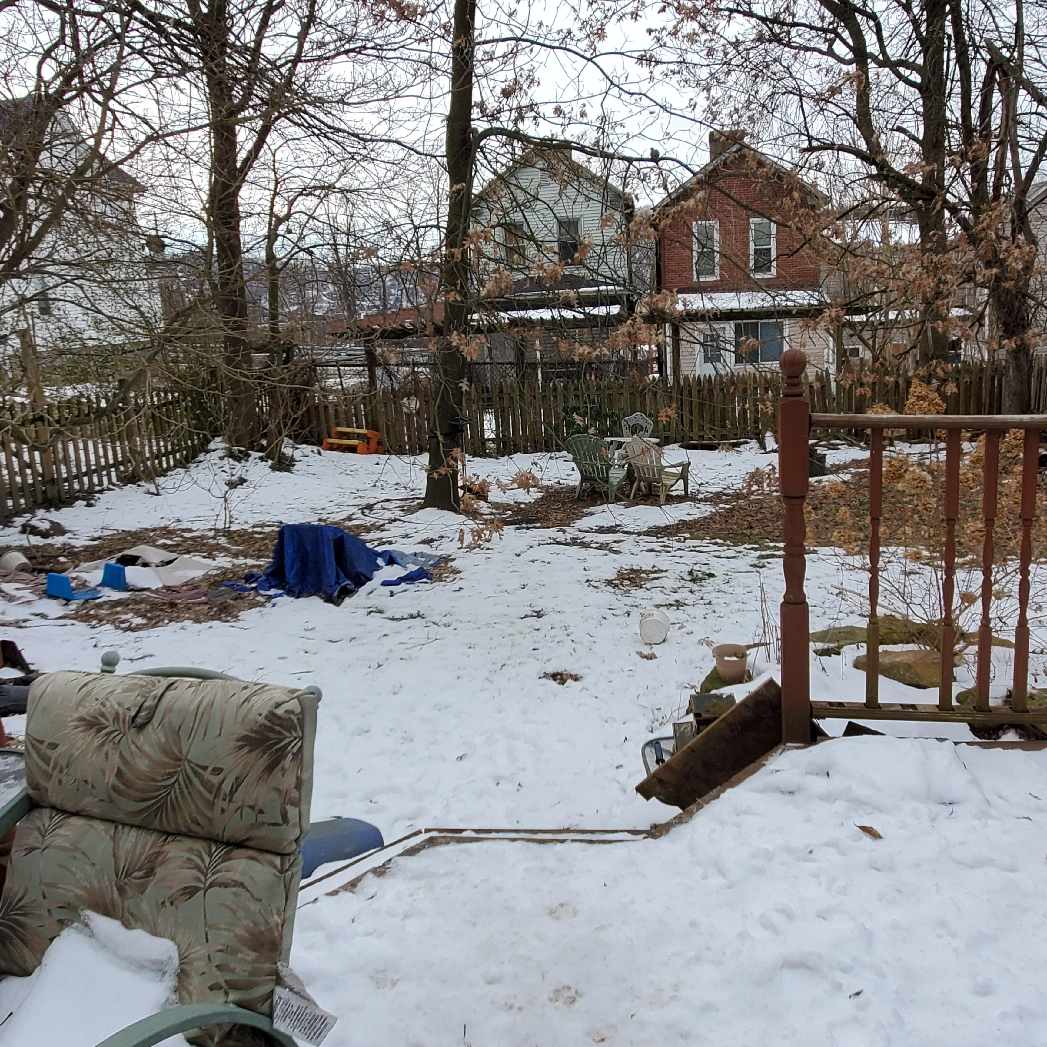 back yard (1)