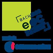 EGC-villefontaine-logo.png