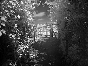 fotografie, infrarot, infrared, bridge, foliage, brücke, grün