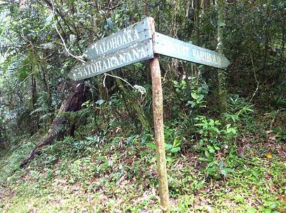 madagaskar, ranomafana, hike, madagascar, wandern, rainforest, regenwald, signpost, crossroads, valohoaka, vatoharanana