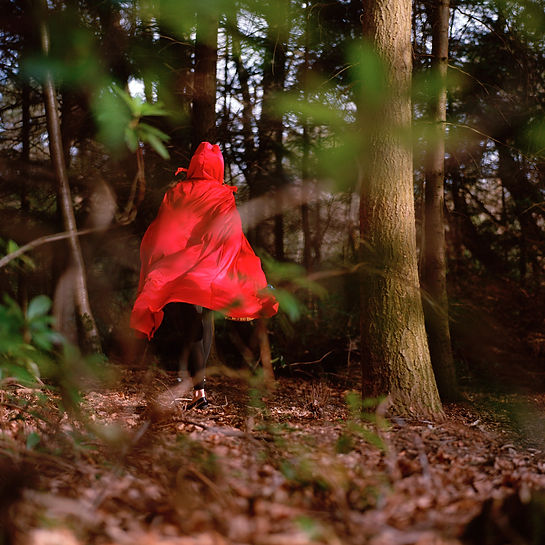 red riding hood, rotkappchen, petit chaperon rouge, wolf, woods, lurking,