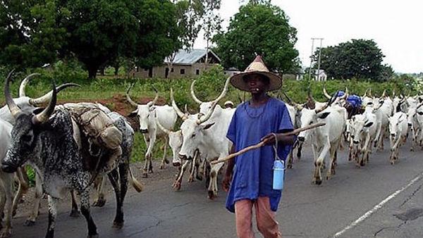 Fulani-herdsman.jpg