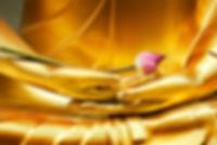 bouddha doré, statue avec fleur entre les mains, livre d'or hypnose07