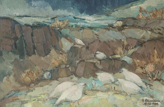 Rjúpur á Þingvöllum 1938 M – Ptarmigans at Þingvellir M