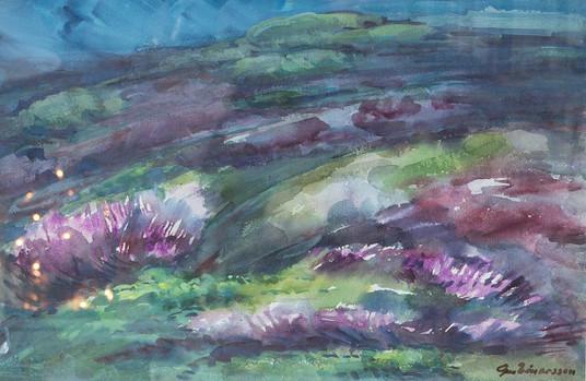 Heiðagróður að hausti H – Autumn heath vegetation H