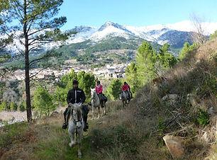 Ruta a caballo en El Arenal