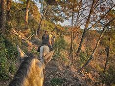 Ruta a caballo en otoño