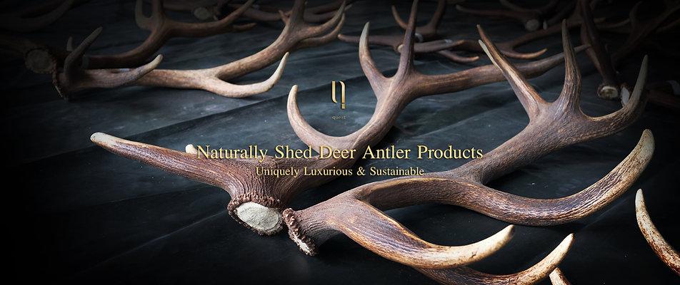 ngernma-quest-deer-antler-banner.jpg