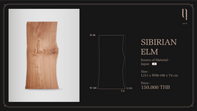 SIBIRIAN ELM