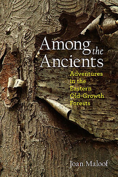 Joan Maloof: Among the Ancients