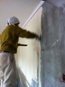 プレジールメゾン:清潔な住まい/漆喰塗り/フランス輸入住宅