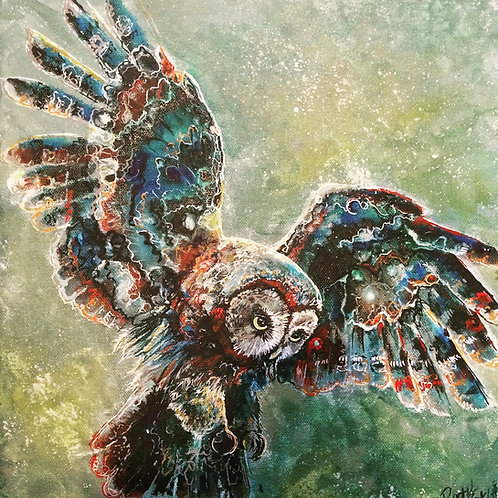 owl Wooden Print