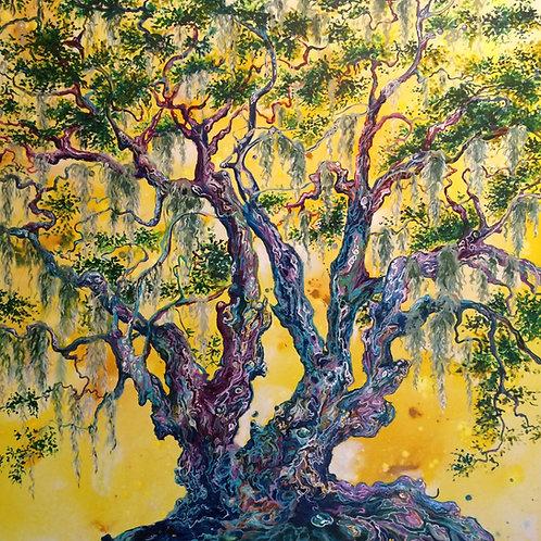 The Joy of Trees
