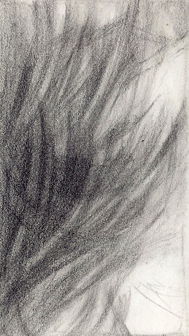 Soft lines study 4