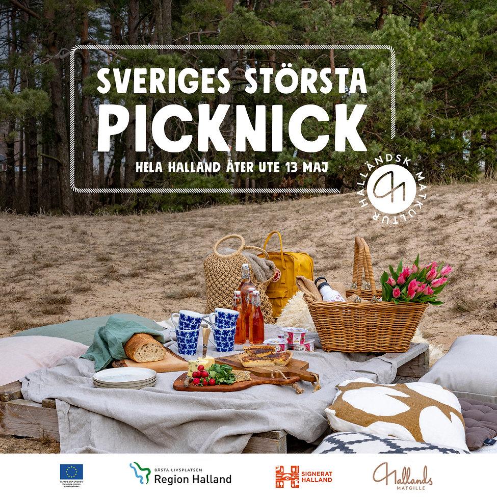 Picknick_Socialmedia.jpg