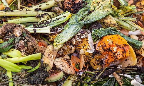 food-waste-header.jpg