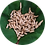 Thumbnail: Black Soldier Fly Dried Larvae (500g)