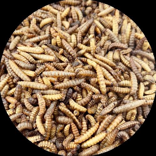 Black Soldier Fly Dried Larvae (500g)