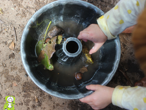 Infância e Natureza: primeiras experiências.