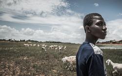 Humans&Climate Change Stories | Mali | Samuel Turpin