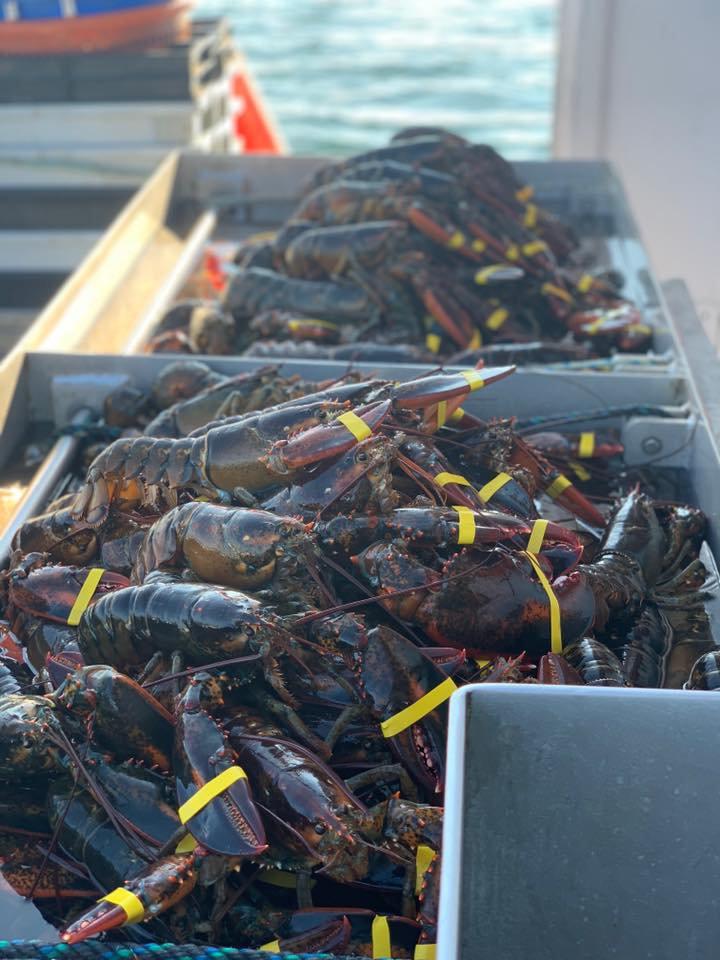 Lobster Order
