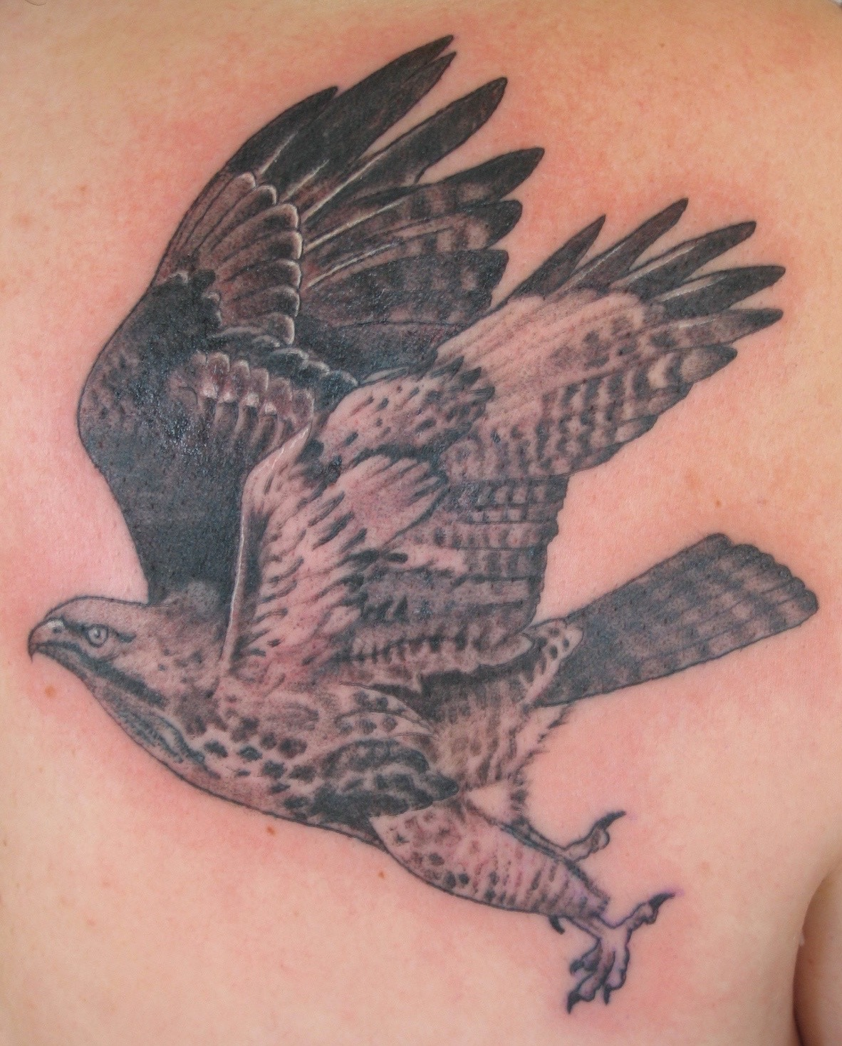Hawk tattoo, Karina Mayorga